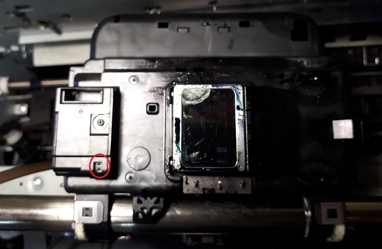 Epson L800/L805 прогоняет чистый лист