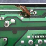 Тараканы против принтеров